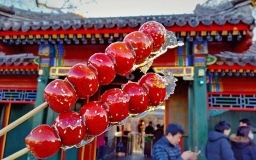 Candied haws on a stick
