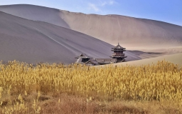 Tranport in Dunhuang
